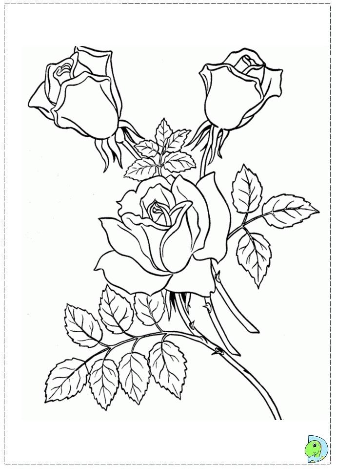 Flowers Coloring Dinokids